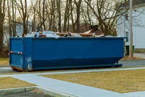 dumpster house project